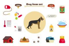 Objekt och material för omsorg för hundobjektuppsättning Beståndsdelar runt om hunden Arkivbild