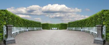 Objektet parkerar med slätt klippte buskar Royaltyfria Bilder