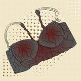 Objet d'art de bruit du soutien-gorge de l'habillement des femmes, soutien-gorge mode, style pour la dame sûre Photos stock