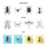 Objet d'isolement de logo d'insecte et de mouche Ensemble d'illustration courante insecte vecteur et d'?l?ment illustration de vecteur