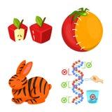 Objet d'isolement de modifier et génétiquement signe Collection d'ic illustration stock