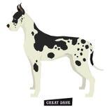 Objet d'isolement grand par style de Dane Geometric de collection de chien Image stock