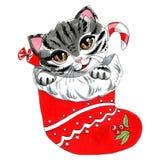 Objet d'isolement par illustration de marqueur sur un chat blanc et des sucreries de fond dans un bas rouge de Noël illustration stock