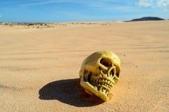Objet dans le désert sec Photos libres de droits