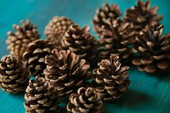 Objet du pin Cones Texture de cônes de pin Fond de cônes de pin Photos libres de droits
