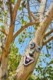 Objet façonné sur un arbre avec les yeux, le nez et les lèvres dans un jardin image stock