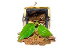 objet monétaire au-dessus de blanc d'arbre Image libre de droits