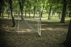 Objetivo da lacrosse imagem de stock royalty free