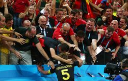 Objetivo Jan Vertonghen Coupe du monde 2014 Fotografia de Stock