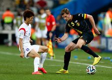 Objetivo Jan Vertonghen Coupe du monde 2014 Fotos de Stock Royalty Free