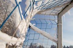 Objetivo no inverno Fotos de Stock Royalty Free