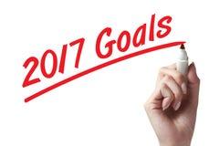 Objetivos do ano novo Foto de Stock