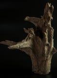 Objeto de madeira Fotos de Stock Royalty Free