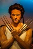 Objeto expuesto de la figura de cera de Hugh Jackman (Wolverine) imagenes de archivo
