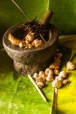 Objeto vegetal de la comida y de la herramienta de la cocina Fotografía de archivo libre de regalías