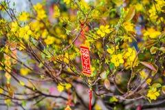Objetos afortunados lunares de la decoración del Año Nuevo las palabras significan recuerdos y la buena suerte por el Año Nuevo v Imagen de archivo libre de regalías