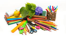Objetos de la flor y de la escuela de la hortensia. Fotos de archivo libres de regalías