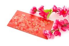 Objetos del Año Nuevo chino o del festival de primavera, aislados Foto de archivo