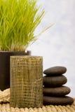 Objetos del balneario y vela aromatherapy Fotos de archivo