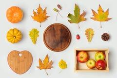 Objetos del Día de Acción de Gracias para la mofa encima del diseño de la plantilla Hojas de la calabaza y de la caída de otoño V Foto de archivo