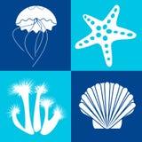 Objetos del mar y elementos del diseño imagen de archivo libre de regalías