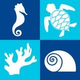Objetos del mar y elementos del diseño imágenes de archivo libres de regalías