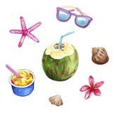 Objetos del viaje, materia de la playa de las vacaciones de verano: coco, gafas de sol, helado, flor del plumeria, cáscaras ilustración del vector