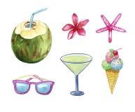 Objetos del viaje y de la playa de las vacaciones de verano: gafas de sol, coco, cóctel, flor del plumeria, estrellas de mar y he ilustración del vector
