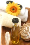 Objetos dos termas/massagem Foto de Stock