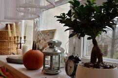 Objetos em um peitoril da janela Fotografia de Stock