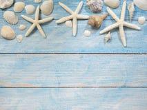Objetos, escudos e estrela do mar marinhos na madeira foto de stock