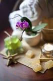 Objetos para TERMAS Fotos de Stock Royalty Free