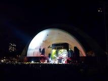 Objetos semitrabajados de Chris Brown del artista de Musicial en la noche en el Waikiki ella Imagen de archivo libre de regalías