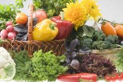 Objetos vegetales del alimento Fotografía de archivo