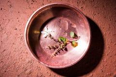 Objets de cuivre utilisés en Sandhya Vandanam, rituel traditionnel de Bramhin Photographie stock