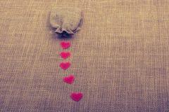 Objets en forme de coeur avant un sac photo libre de droits