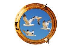 Oblò della barca con il gabbiano immagini stock libere da diritti