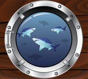 Oblò e squali Immagini Stock