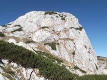 Obla Glava峰顶被环绕的头,杜米托尔国家公园国家公园 免版税库存照片