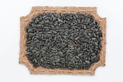 Obliczająca rama burlap z słonecznikowymi ziarnami Obrazy Stock