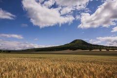 Oblik-Hügel an den tschechischen zentralen Bergen Lizenzfreie Stockfotos