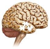 Oblio di malattia del ` s di Alzheimer illustrazione vettoriale