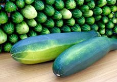 Oblong marrow and green cucumbe Stock Images