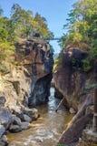 Obluang nationalpark Royaltyfri Foto