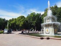Obniża parka w Peterhof fotografia stock
