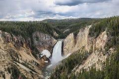 Obniża spadek w Yellowstone parku narodowym Zdjęcia Stock