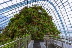 Obłoczna Lasowa kopuła przy ogródami zatoką w Singapur Zdjęcie Royalty Free