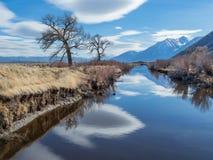 Obłoczni odbicia w Carson rzeki dolinie Fotografia Stock