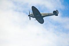 obłoczny latający cholernik Obraz Royalty Free