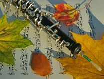 Oboe, Autumn Leaves & Music Page royalty free stock image